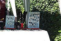 Foto Fiera del Fungo di Albareto 2010 Fungo_Albareto_2010_062