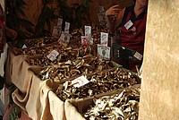 Foto Fiera del Fungo di Albareto 2012 Fungo_Albareto_2012_021