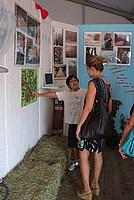 Foto Fiera del Fungo di Albareto 2012 Fungo_Albareto_2012_022