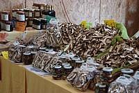 Foto Fiera del Fungo di Albareto 2012 Fungo_Albareto_2012_027