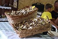 Foto Fiera del Fungo di Albareto 2013 Fungo_Albareto_2013_031