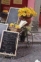 Foto Fiera del Fungo di Borgotaro 2009 Porcino_IGP_2009_012