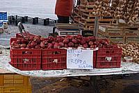 Foto Fiera del Fungo di Borgotaro 2009 Porcino_IGP_2009_029