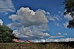 Foto Fiera di San Terenziano 2008 San_Terenziano_2008_149
