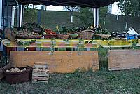 Foto Fiera di San Terenziano 2009 San_Terenziano_2009_016