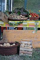 Foto Fiera di San Terenziano 2009 San_Terenziano_2009_017