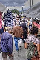 Foto Fiera di San Terenziano 2011 San_Terenziano_2011_084
