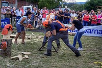 Foto Fiera di San Terenziano 2013 San_Terenziano_2013_113