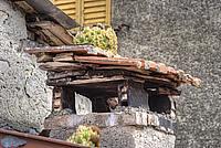 Foto Frassineto 2011 Frassineto_11_015
