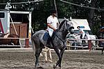 Foto Gara di Equitazione 2007 Equitazione_2007_037