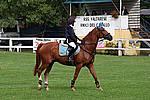Foto Gara di Equitazione 2007 Equitazione_2007_046