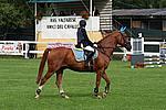 Foto Gara di Equitazione 2007 Equitazione_2007_047