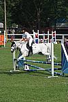 Foto Gara di Equitazione 2008 Equitazione_2008_012