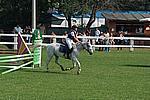 Foto Gara di Equitazione 2008 Equitazione_2008_022