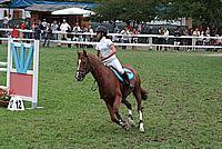 Foto Gara di Equitazione 2009 - Pt2 Equitazione_2009_005