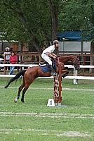 Foto Gara di Equitazione 2009 - Pt2 Equitazione_2009_009