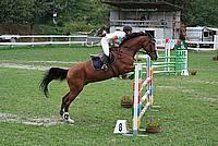 Foto Gara di Equitazione 2009 - Pt2 Equitazione_2009_026