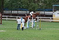 Foto Gara di Equitazione 2009 - Pt2 Equitazione_2009_031