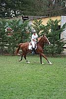 Foto Gara di Equitazione 2009 - Pt2 Equitazione_2009_034
