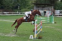 Foto Gara di Equitazione 2009 - Pt2 Equitazione_2009_036