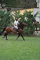 Foto Gara di Equitazione 2009 - Pt2 Equitazione_2009_039