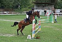 Foto Gara di Equitazione 2009 - Pt2 Equitazione_2009_048