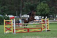 Foto Gara di Equitazione 2009 - Pt2 Equitazione_2009_132