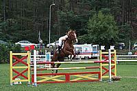 Foto Gara di Equitazione 2009 - Pt2 Equitazione_2009_138