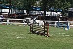 Foto Gara di Equitazione 2009 Equitazione_09_008