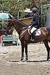Foto Gara di Equitazione 2009 Equitazione_09_037