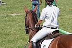 Foto Gara di Equitazione 2009 Equitazione_09_043