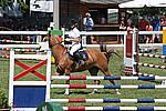 Foto Gara di Equitazione 2009 Equitazione_09_046