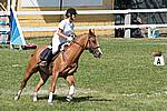 Foto Gara di Equitazione 2009 Equitazione_09_047