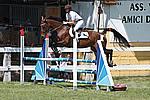 Foto Gara di Equitazione 2009 Equitazione_09_049