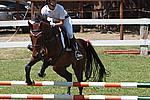 Foto Gara di Equitazione 2009 Equitazione_09_050