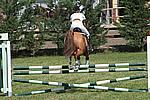 Foto Gara di Equitazione 2009 Equitazione_09_053