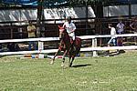 Foto Gara di Equitazione 2009 Equitazione_09_073