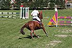 Foto Gara di Equitazione 2009 Equitazione_09_077