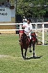 Foto Gara di Equitazione 2009 Equitazione_09_079