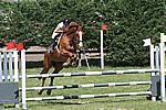 Foto Gara di Equitazione 2009 Equitazione_09_082