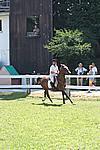 Foto Gara di Equitazione 2009 Equitazione_09_109