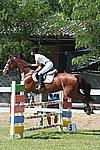 Foto Gara di Equitazione 2009 Equitazione_09_138