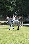 Foto Gara di Equitazione 2009 Equitazione_09_204