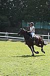Foto Gara di Equitazione 2009 Equitazione_09_218