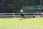 Foto Gara di Equitazione 2009 Equitazione_09_226