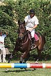 Foto Gara di Equitazione 2009 Equitazione_09_228