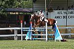 Foto Gara di Equitazione 2009 Equitazione_09_242
