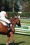 Foto Gara di Equitazione 2009 Equitazione_09_244