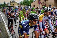 Foto Giro Italia 2013 - Roncole Verdi Giro_Italia_2013_042