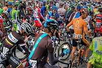Foto Giro Italia 2013 - Roncole Verdi Giro_Italia_2013_057